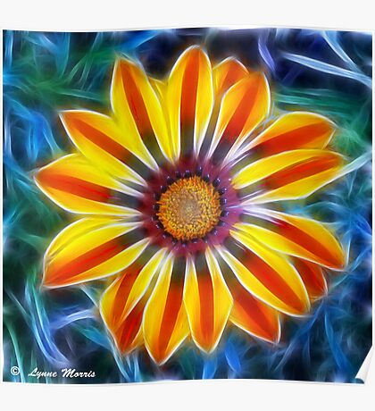 Mystical Marigold Poster