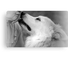 Last Kiss Canvas Print