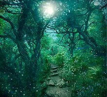 The Secret Path by Angie Latham