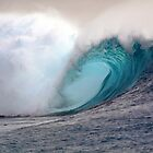 Powerful Ocean Waves by Vince Gaeta