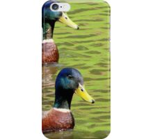 Synchronized Swimming Duck Duet  iPhone Case/Skin