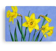 Yellow Daffodils Watercolor Canvas Print