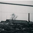 Dead Land 3 by Matt Roberts
