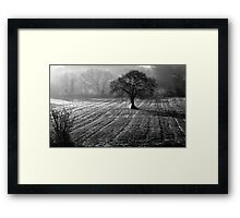 FivemilebridgeTree Framed Print