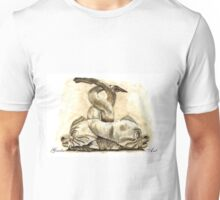 Dolphins, Piazza del Popolo, Rome Unisex T-Shirt
