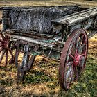 Retired Hay Wagon by Terence Russell