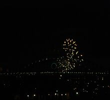 9:00 pm fireworks 2009 by lisacorc