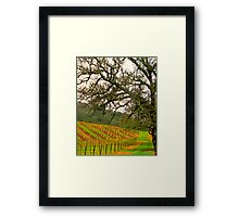 napping valley Framed Print