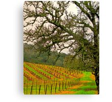 napping valley Canvas Print