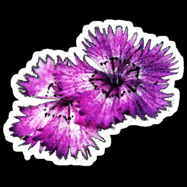 Dianthus (T-Shirt), dark, watercolor effect by Lenka
