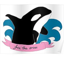 Save the Orcas Poster