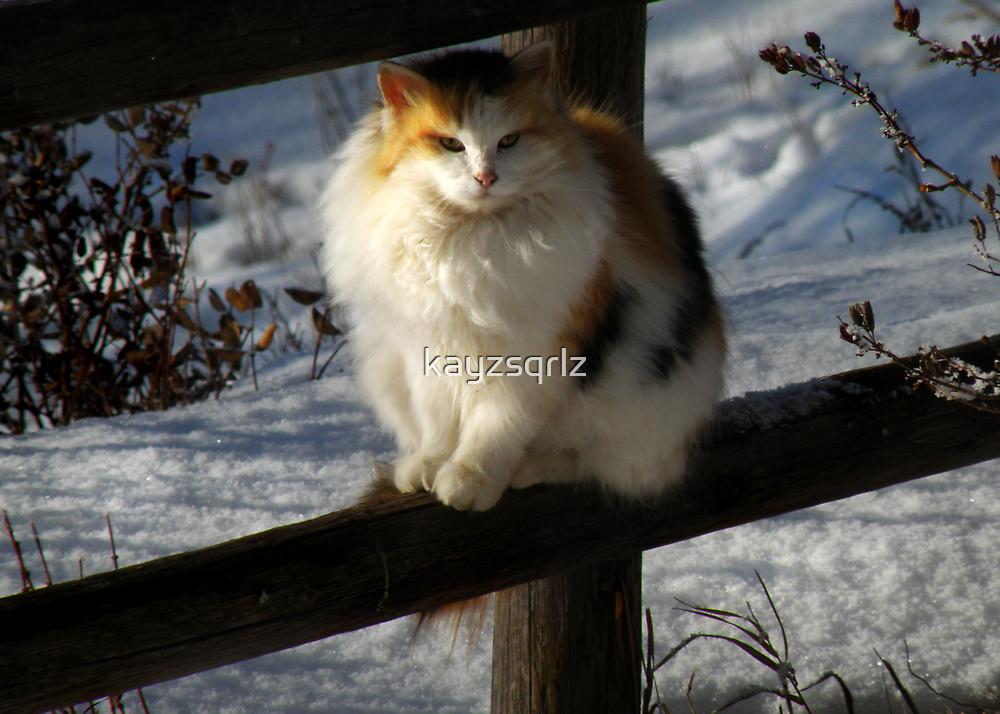 Winter Coat by Kay Kempton Raade