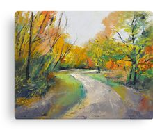 Autumn Woodland Path Canvas Print