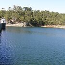 Mundaring Weir; quite a popoular tourist attraction in Perth. by m004