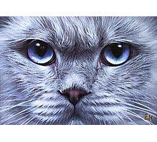 """Blue"" Photographic Print"