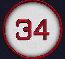34 - Big Papi (alt version) by DesignSyndicate