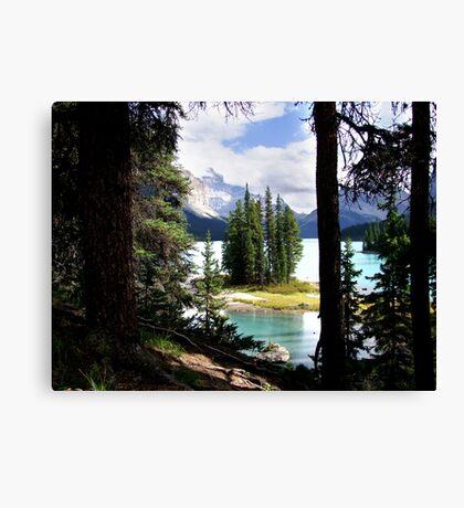 Framed Canvas Print