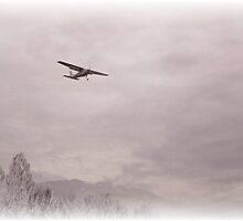 Sky Scene by trisha22