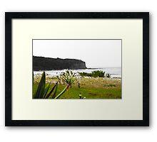 Coastal Greenery Framed Print