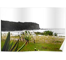 Coastal Greenery Poster