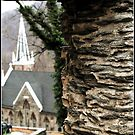 Harpers Ferry, West Virginia, ruins by Melinda  Ison - Poor