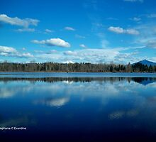 Lake Cassidy by Stephanie Exendine