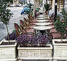 Outdoor Dining by threewisefrogs