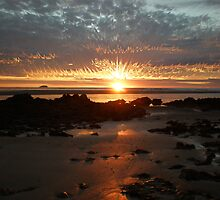 Fire In The Sky by Sue Wetherell