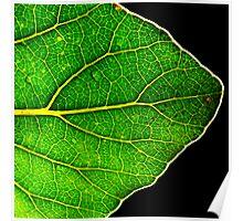 A New Leaf Poster