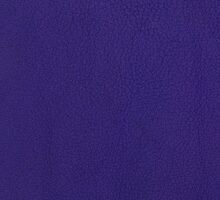 Violet leather texture by homydesign