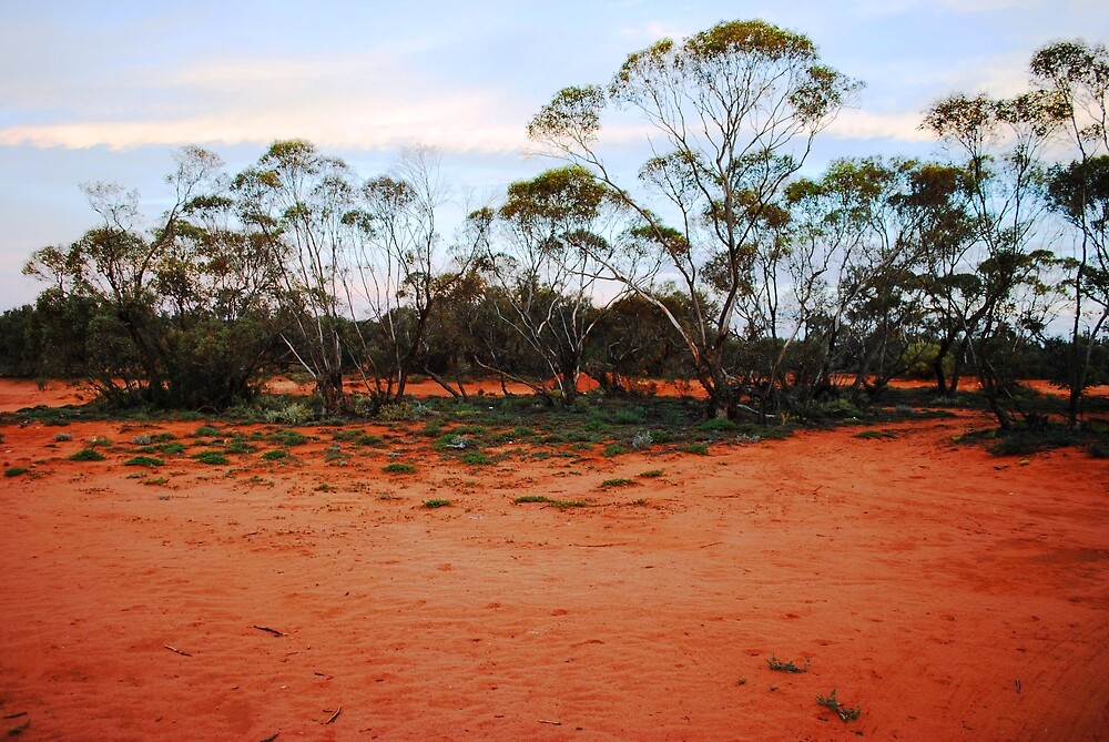 Turlee Station red earth by John Carroll