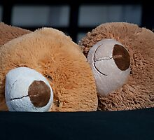 Snuggle Bears by Doug Greenwald