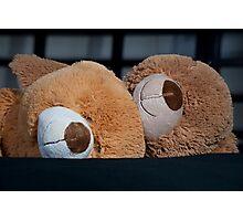 Snuggle Bears Photographic Print
