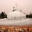 ~Frozen Fountain~ by Terri~Lynn Bealle