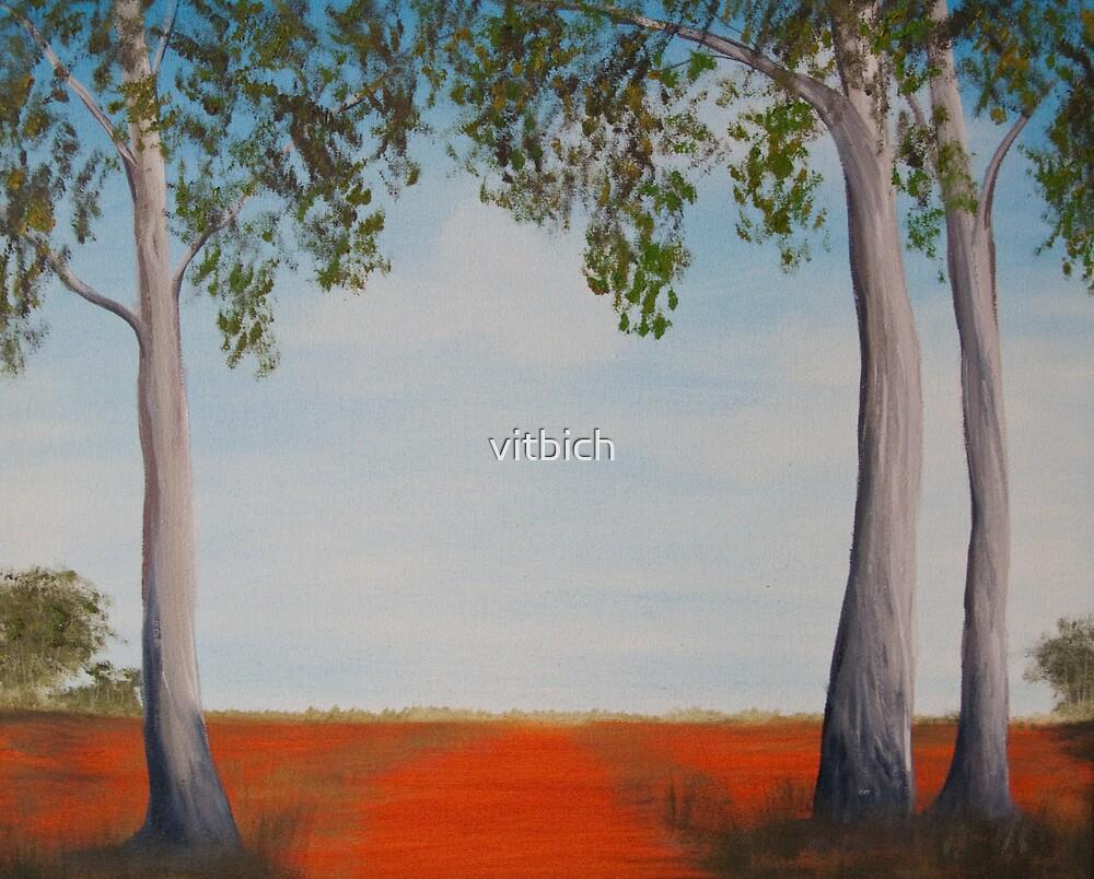 Australian outback by vitbich