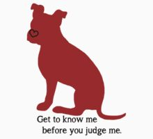 Know Me Before You Judge Me pit bull logo Kids Clothes