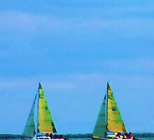 Double Sails by Lynn A Marie