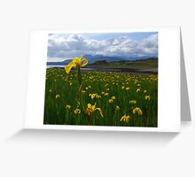 Wild Iris and the Cuillins - Skye, Scotland Greeting Card