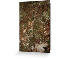 leaftail gecko stealth Greeting Card
