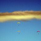 Voando entre as nuvens... by Gilberto Grecco