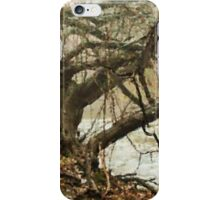 Mysterious Trees  iPhone Case/Skin