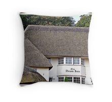 """"""" Living in the past"""" Throw Pillow"""