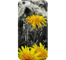 Dandelion V2 iPhone Case/Skin