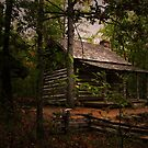 Wolly Hollow Cabin by Lisa G. Putman