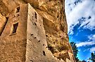 Anasazi Cliff Palace by njordphoto