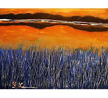 Reeds in the Sunset twilight zone Photographic Print