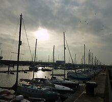 Fleetwood Marina  by Lilian Marshall
