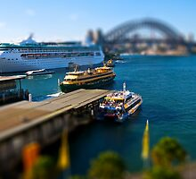 Miniature Sydney Harbour by primovista