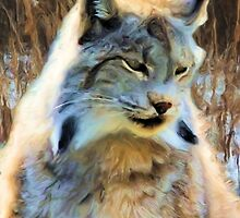 Winter Lynx by Lynn A Marie