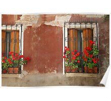 Red Begonias Poster